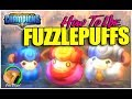 DUNGEON HUNTER CHAMPIONS: How to use FUZZLEPUFFS!