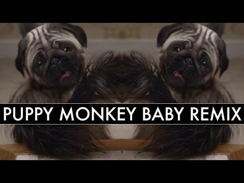 Puppy Baby Monkey Remix (Kevin Ryder/Mike Relm)