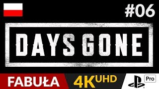 Days Gone PL  #6 (odc.6)  Horda, snajper i intryga | Gameplay po polsku 4K