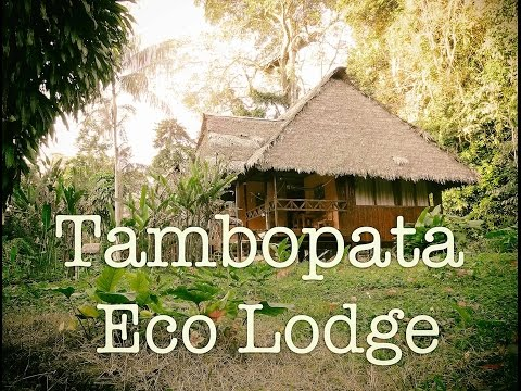What to expect staying in a rainforest lodge in Peru 🇵🇪