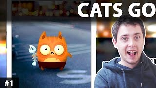 CATS GO | KOTY GO GAMEPLAY PL | Cats go - Gra podobna do POKEMON GO