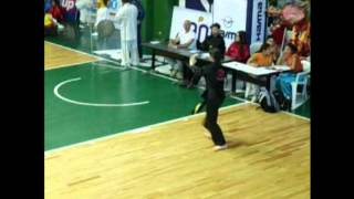 Panamericano 2014 Forma Tai Chi Estilo Chen, Abanico de 52 Movimiento Kung fu Lung Chuan