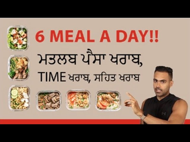6 Meal a Day Waste Of Money And TIME | While Fasting 2 Meal  Diet Results Are  Best |