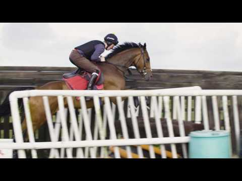 Ditcheat Thoroughbreds Racehorse Syndicate.  Introduction to the horses by Paul Nicholls