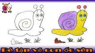 Bé tập vẽ con Ốc sên theo mẫu | draw a snail