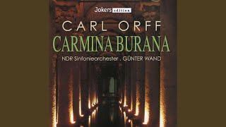 Carmina Burana: III. Cour d