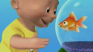 Baby Signs - FISH: My Pets Signs DVD - Preview Clip