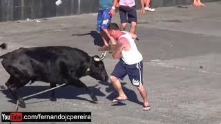 Spaß für Bullen mit dummen Touristen in Portugal