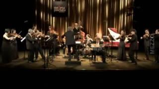 Il Giardino Armonico - Vivaldi - Concerto for strings in G minor RV 157
