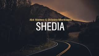 Video Alick Macheso - Shedia download MP3, 3GP, MP4, WEBM, AVI, FLV Juli 2018