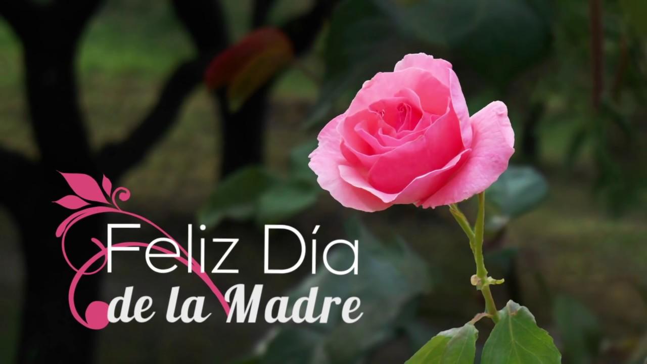 Wallpaper Dia De Las Madres Im 225 Genes D 237 A De La