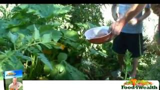 Breaking News!! Gardening Made Easy !easy Vegetable Gardening Without The Problems