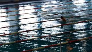 Чемпионат РК - Плавание 2011
