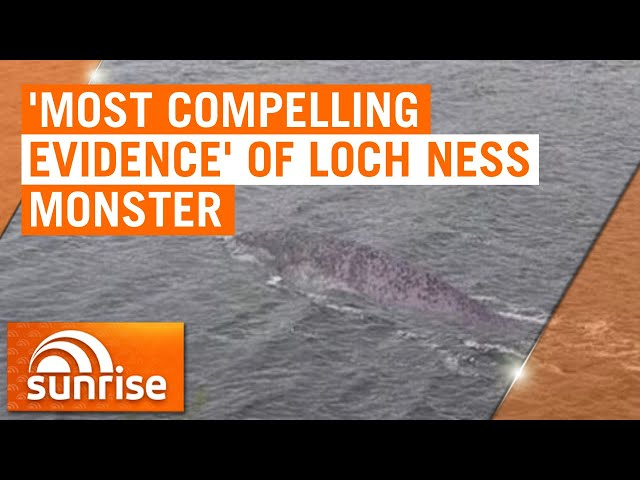 New photo of Loch Ness Monster could be most compelling evidence yet | 7NEWS