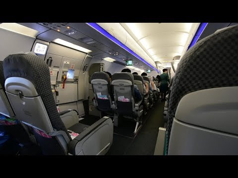 Economy Class | EVA Air BR112 Taipei Taoyuan to Okinawa Naha Airbus A321-200 (Review #32)