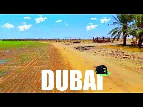 Dubai farming & Agriculture