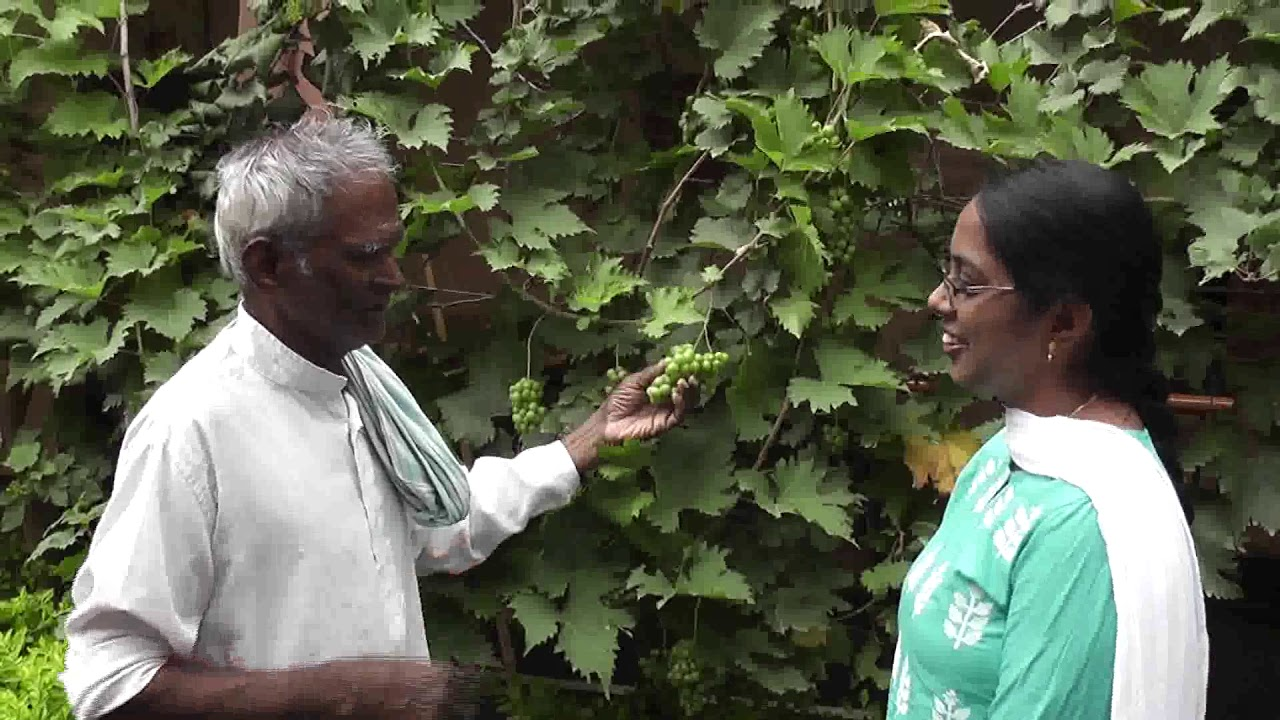 Sunitha Volunteer talks to a Resident at the Little Sisters of the Poor in Guntur.