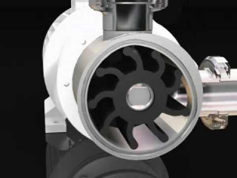 Inoxpa Rf Flexible Impeller Pump Avi Youtube