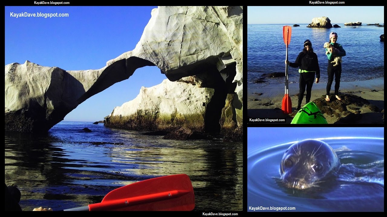 Kayak Shell Beach Dinosaur Caves Pismo California Kayaking Sea Seals You