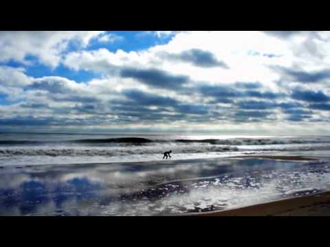 Ocean City Surf Report 1-12-12 Atlantic Shores Realty