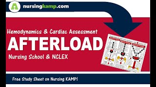 What is  Afterload and hemodynamics  NCLEX Nursing KAMP 2019