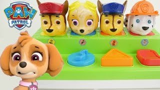 paw patrol pop up pals toys learn colors with color changing bubbles water toy