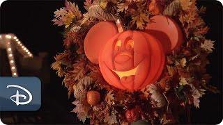Magic Kingdom Park Transforms For Fall   Walt Disney World