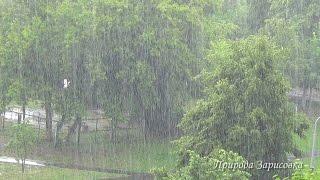 Дождь Ливень Гроза Шум дождя Звук дождя Гром и дождь Молнии Проливной дождь