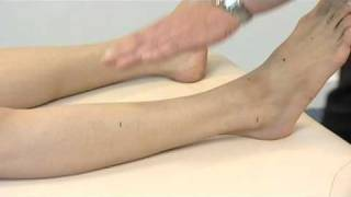 Acupuncture DVD - How to Locate Acupuncture Points (ST40)