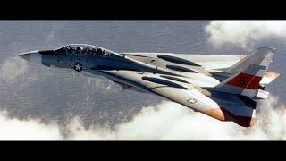FS2004 - Catastrophic Vibrations (Grumman F-14 Tomcat Prototype No. 1 Crash)