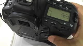 Canon EOS-1D X : Shutter Sound