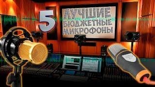 Топ 5 самых лучших бюджетных микрофонов