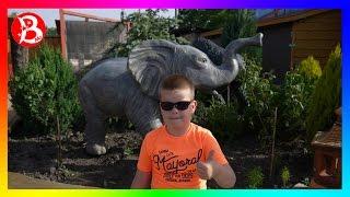 VLOG: Зоопарк ЛИМПОПО кормим медведя и других зверюшек  (Часть 1)  ZOO LIMPOPO (Part 1)