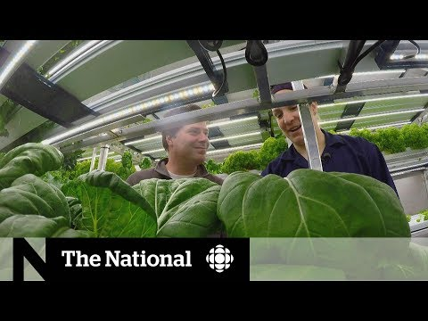New Technology Gets Fresh Food To Remote Canadian Communities   The Fix
