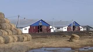 Олег Грищенко выступил против увеличения налога на сельскохозяйственные земли