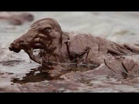 BP Oil Spill Photos