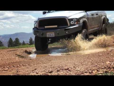 Custom Truck Acc./Palace Jewelry & Loan/Reno Flying Service as Seen on Nevada Business Chronicles
