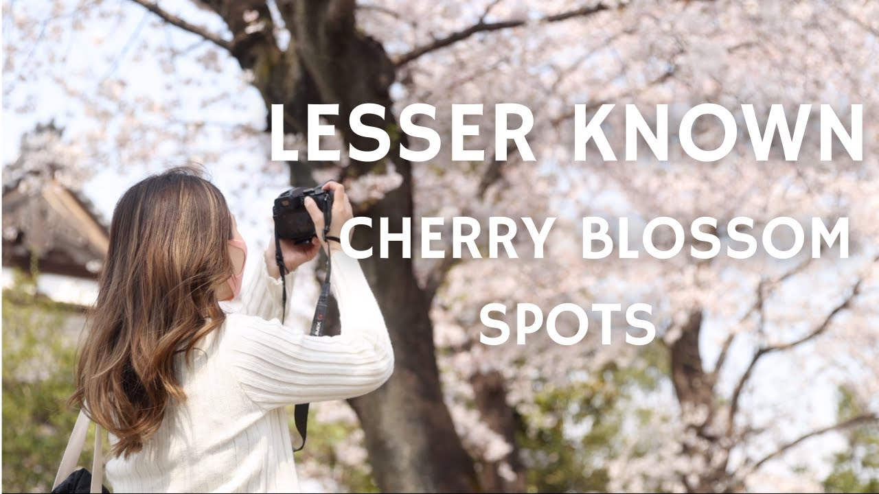 5 LESSER KNOWN Cherry Blossom Spots In Tokyo