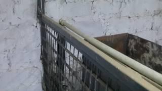 видео: Построили сарай для свиней. Обзор.