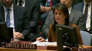 Экстренное заседание Совбез ООН по Сирии. Выступление США