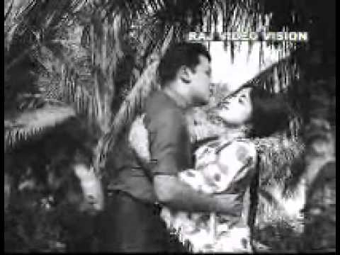 Angam Puthuvitham-Veetuku Veedu