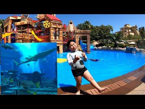 Atlantis Aquaventure Waterpark | The Lost Chambers Aquarium