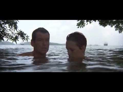Slicked Back Hair - Pierce Brosnan