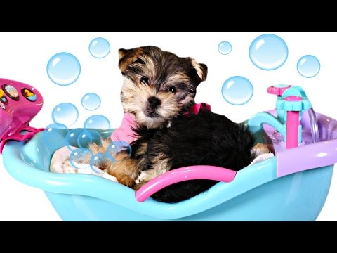 Bathtime Puppy Starring Zumi - Baby Doll Bubble Bathtub