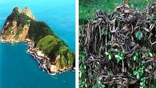 10 جزر حول العالم لا يجب عليك الذهابُ إليها