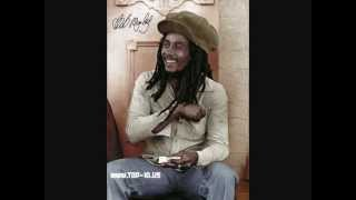 Download Bob Marley- Three Little Birds (I'am legend theme) MP3 song and Music Video