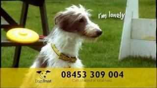 Dogs Trust Ad