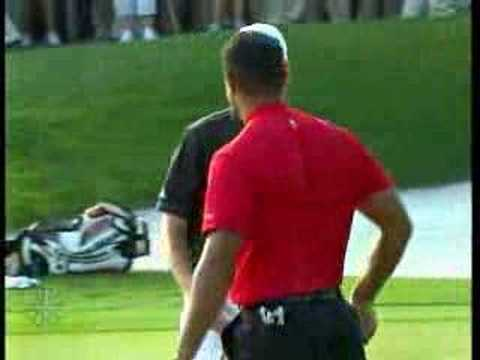 Tiger Woods - Bay Hill 2008 :18th Hole