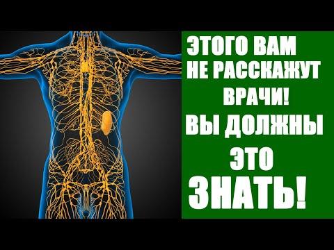 ЛИМФАТИЧЕСКАЯ СИСТЕМА. ЗАСТОЙ ЛИМФЫ. ЛИМФОУЗЛЫ. ЛИМФА это иммунитет человека.