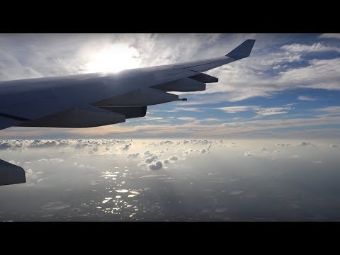 Lufthansa Full Flight Frankfurt - Tampa A340-330